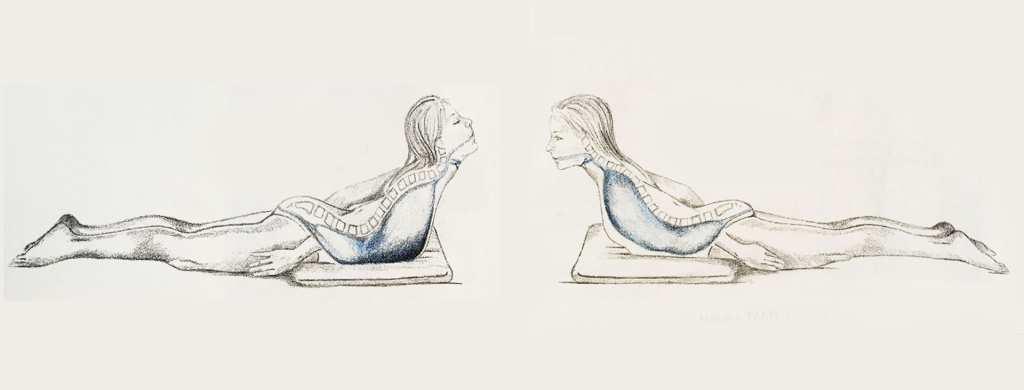 organos en yoga
